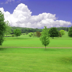 Apple Valley Golf Course Lots for Sale